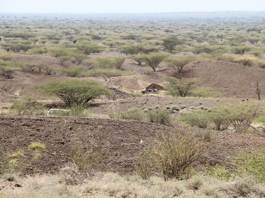 View of the excavation site near Lake Turkana.