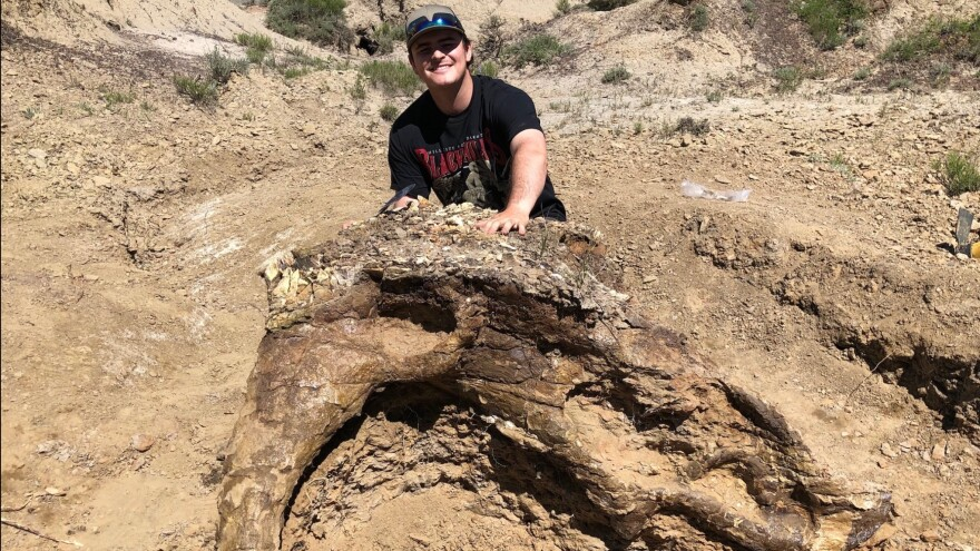 Harrison Duran, 23, poses with Alice, the 65-million-year-old partial skull of a triceratops. The dinosaur-obsessed student helped find Alice on an expedition with the Fossil Excavators.