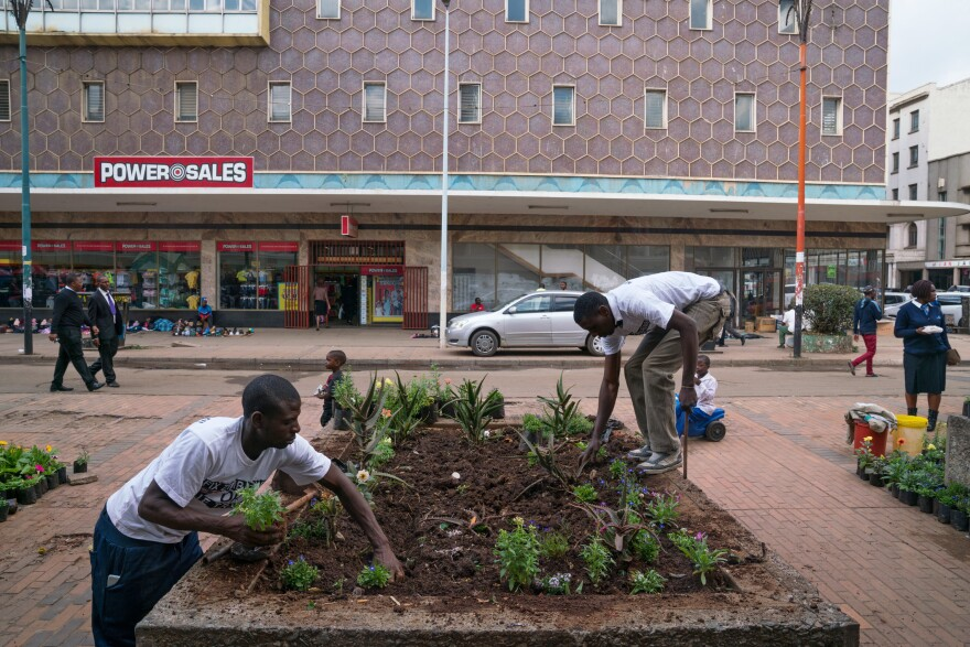 Enyway Chatambudza (left) and Kuda Ndanga plant new plants in a previously untended planter on First Street in Harare.