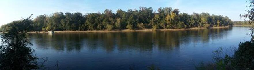 A panoramic view of Apalachicola River from Florida's Torreya State Park.