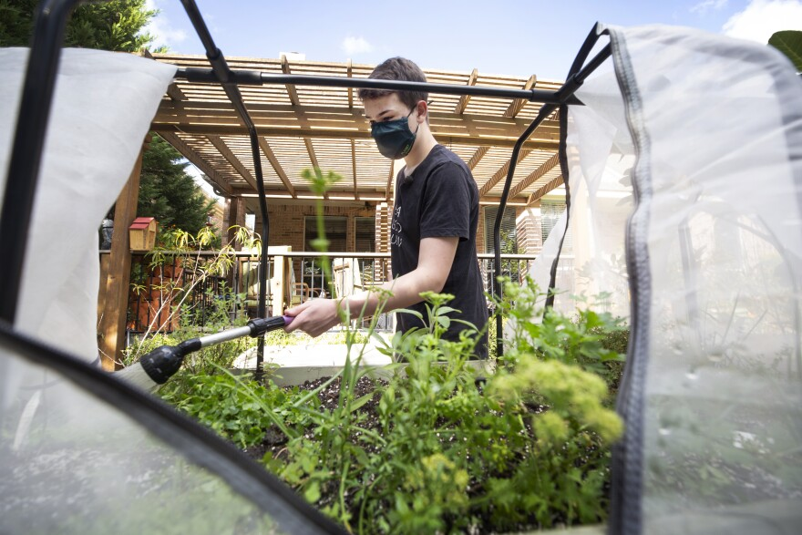 Ian, a high school senior with special needs, waters his garden beds in his backyard.