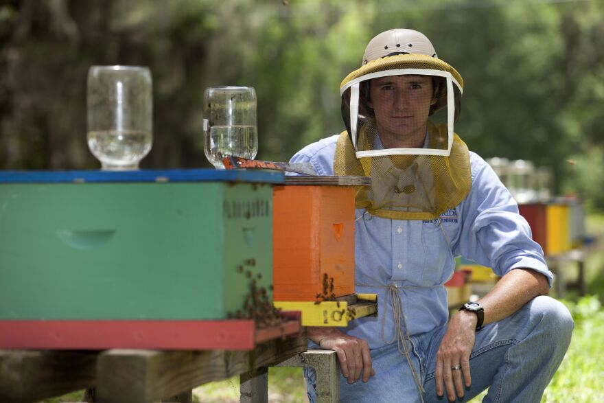 Jamie Ellis directs honey bee research at the University of Florida.
