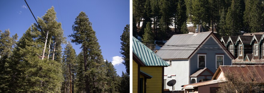 (Left) To mitigate fire risk, the town is increasing tree clearances around power lines to 12 feet from 7 feet. (Right) Replacing wood shake roofing with metal or asphalt can help prevent the spread of wildfire.