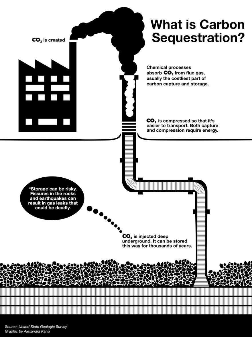 carbon-sequestration-graphic.jpg