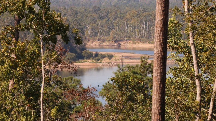 view of river through trees