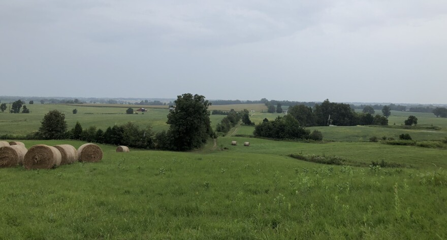 A view of Webster County, Ky., from the back of my grandfather's farm.