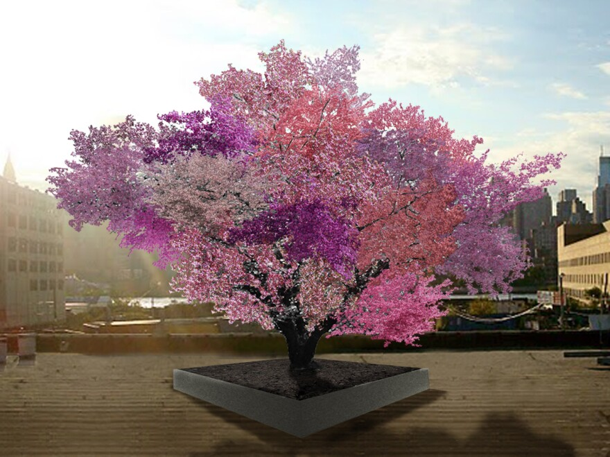 """Sam Van Aken's grafted fruit trees are still quite young, but this artist rendering shows what he expects the """"Tree of 40 Fruit"""" to look like in springtime in a few years."""