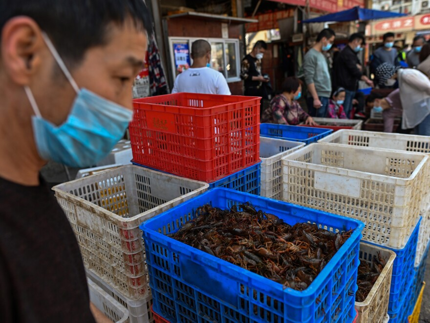 The Wuhan Baishazhou Market in Wuhan in China's Hubei province, shown last week. China's wet markets have come in for criticism after one was identified as the likely source of the novel coronavirus.