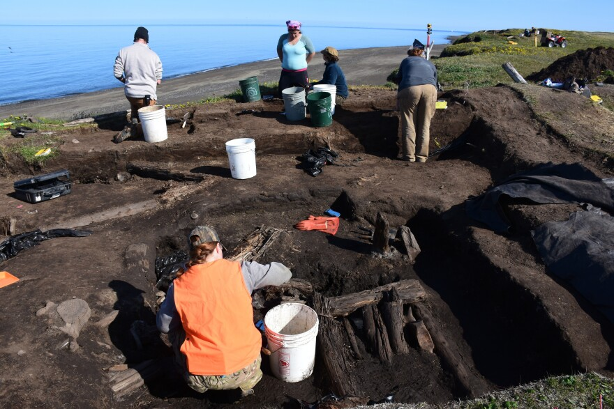A team of volunteers rushes to excavate an ancient hunting cabin near Utqiagvik, Alaska, the town formerly known as Barrow.