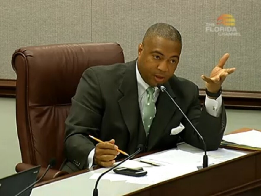 Sen. Chris Smith (D-Ft. Lauderdale) speaking during a Senate committee hearing Tuesday about his body cameras bill.