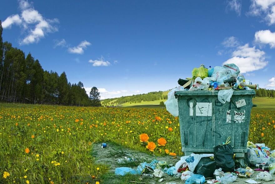trash_bin_garbage_meadow.jpg