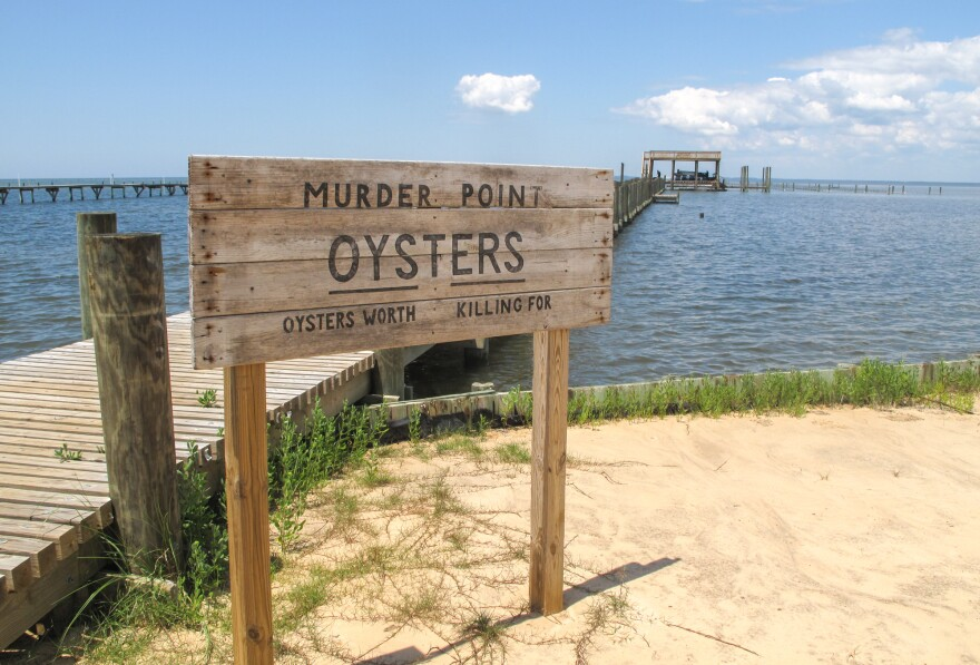 """The Zirlott family's oyster farm is at the end of a long pier in Sandy Bay. Legend has it that the name """"Murder Point"""" comes from a deadly dispute over an oyster lease at this site back in 1929."""
