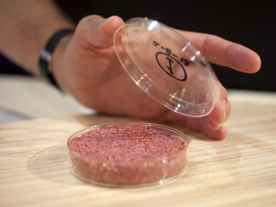 The scientists who developed the in vitro beef say it could help solve the coming food crisis and combat climate change.
