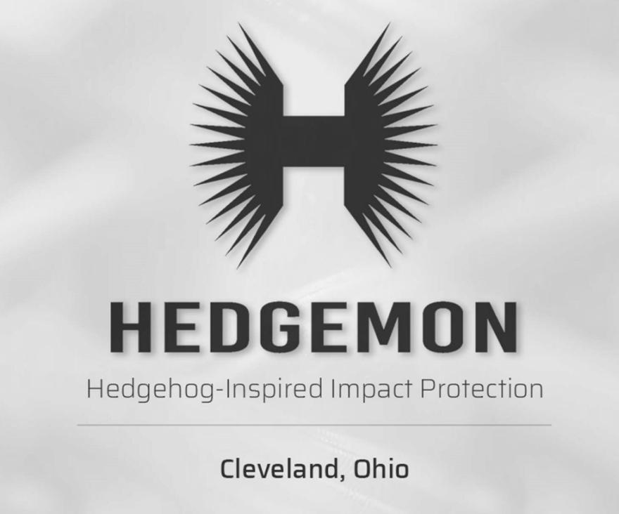 Photo of Hedgemon's logo