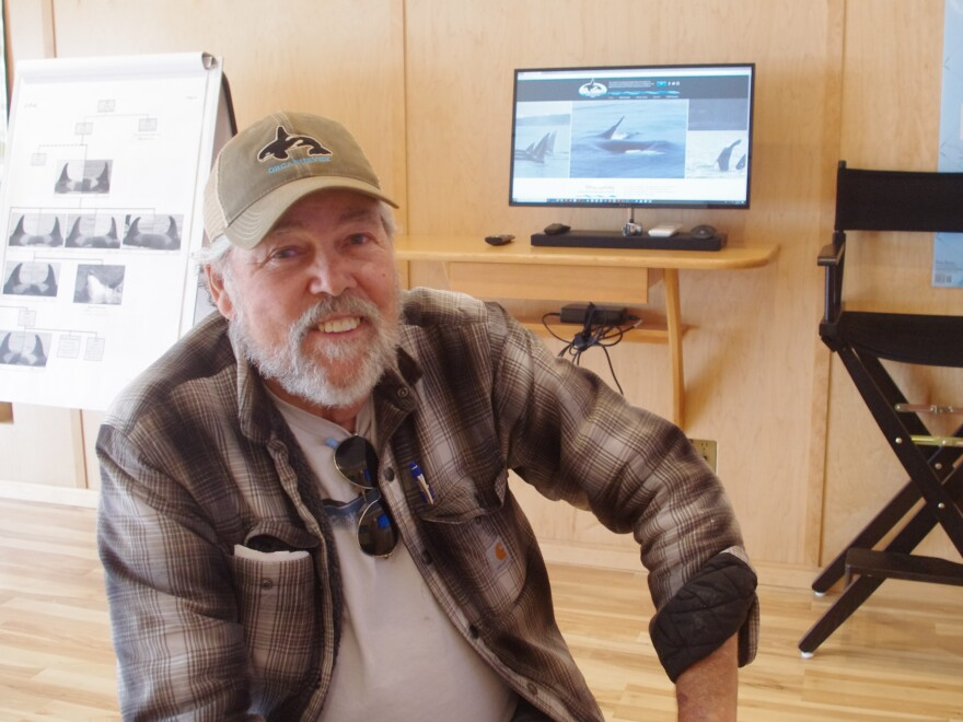 "Ken Balcomb, longtime killer whale researcher, at the educational space of the Center for Whale Research, in Friday Harbor, Wash. He calls concerns about boat noise making it harder for orcas to find fish ""baloney."""
