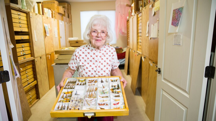 Lois O'Brien holds a few examples from her collection of some 250,000 planthopper specimens. Several rooms in the O'Brien house are filled with glass-topped shelves that she built to house the couple's insect collection, which is one of the world's biggest private collections.