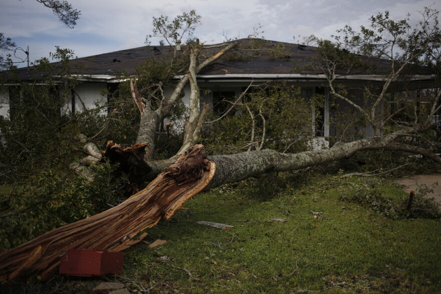 A fallen tree limb in the front yard of a house in Lake Charles, La., after Hurricane Laura made landfall on Thursday.
