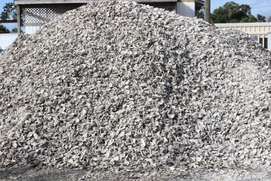 A mountain of oyster shells is a feature of Apalachicola, where the prized bivalves are a local delicacy.   2015
