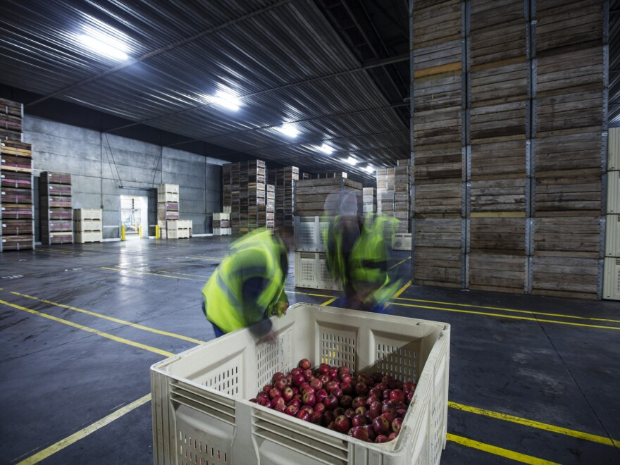 Different apples need different controlled storage environments. For example, Honeycrisps are sensitive to low temperatures so you can't put them in cold environments right after they've been harvested. And Fujis can't take high carbon dioxide levels.