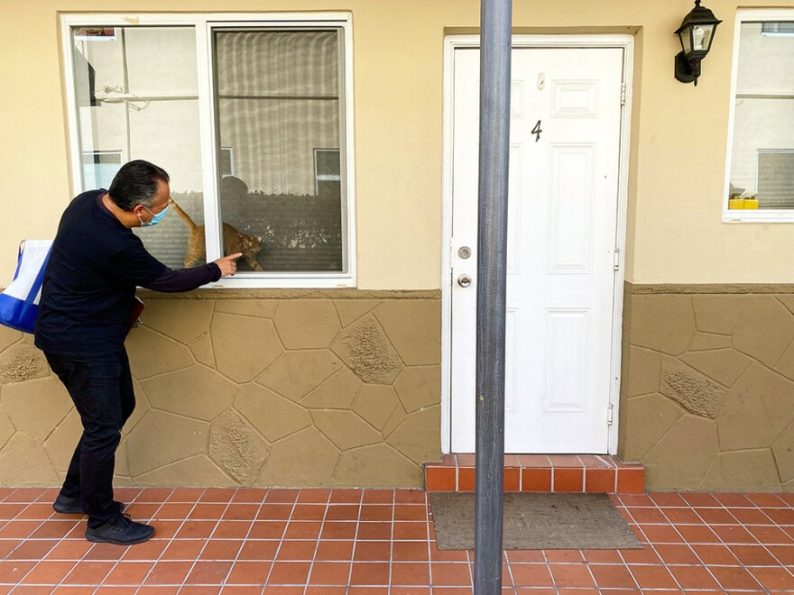 Alejandro Díaz greets a cat on Oct. 23 at an apartment complex in the Little Havana neighborhood of Miami. He's an outreach worker with Healthy Little Havana, going door to door to talk to people about getting tested for COVID-19.