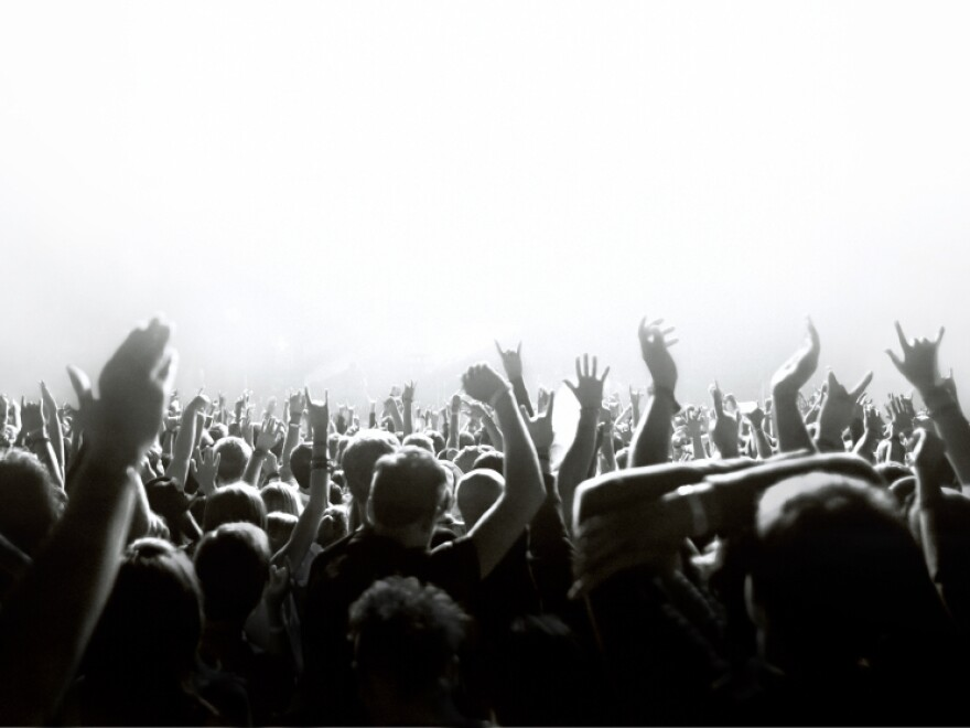 A crowd waving its hands.