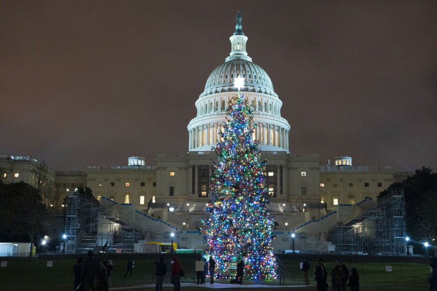 U.S. Capitol Christmas Tree is seen at the U.S. Capitol at night after negotiators sealed a deal for COVID relief Sunday, Dec. 20, 2020, in Washington. Top Capitol Hill negotiators sealed a deal Sunday on an almost $1 trillion COVID-19 economic relief package, finally delivering long-overdue help to businesses and individuals and providing money to deliver vaccines to a nation eager for them.