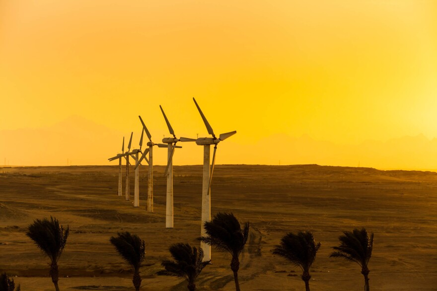 Wind turbines provide energy in Egypt's Sinai Desert. Helping developing countries harness energy from the wind is one of the Green Climate Fund's goals.