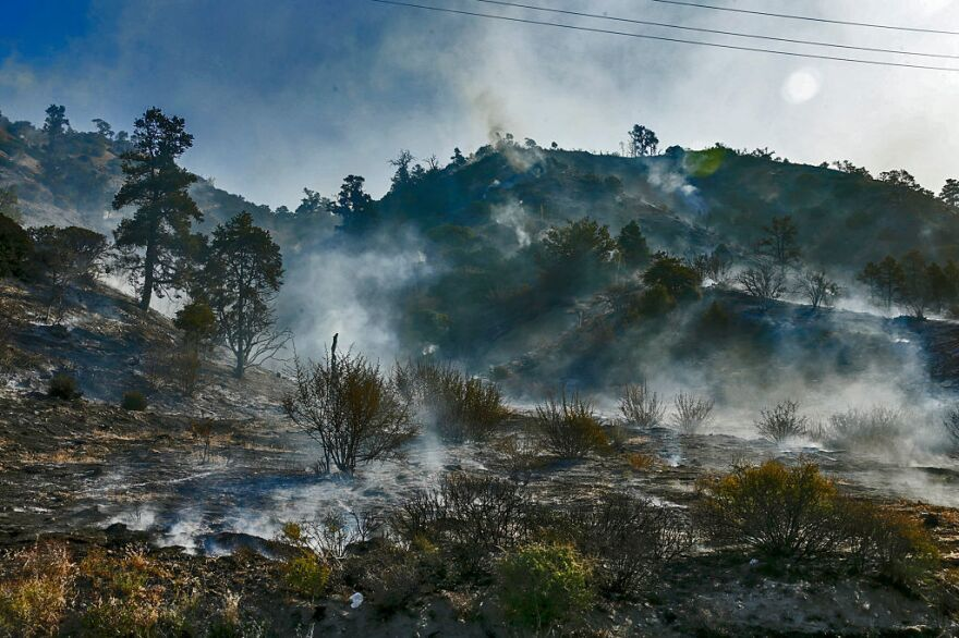 Smoldering hillside from Blue Cut Fire along Highway 2 on the way to Wrightwood.