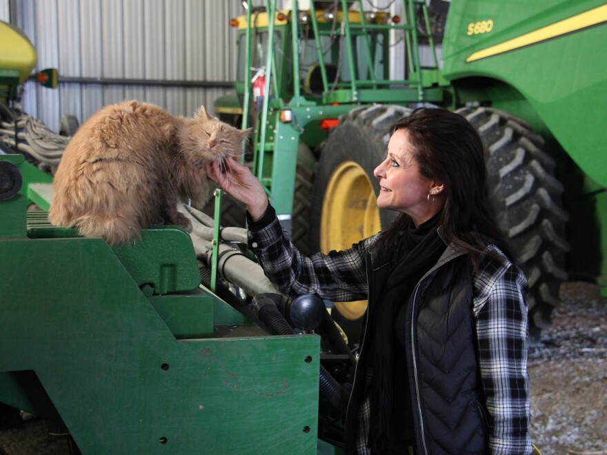 Deb Gangwish with Farley, a cat that once stowed away in a truckload of hay and made it all the way from Nebraska to Illinois and back.