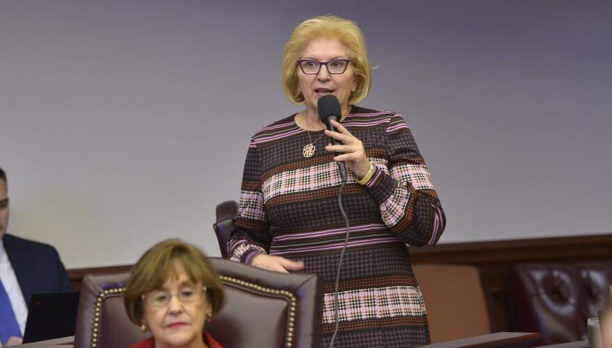Sen. Janet Cruz (D-Tampa) speaking on the House floor on Thursday, February 13, 2020.