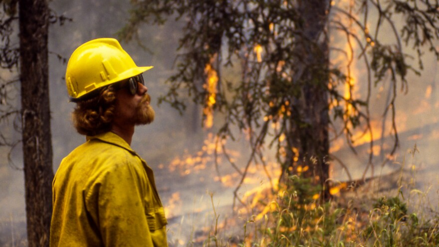 A firefighter watches the flames in Yellowstone National Park during the 1988 fires.