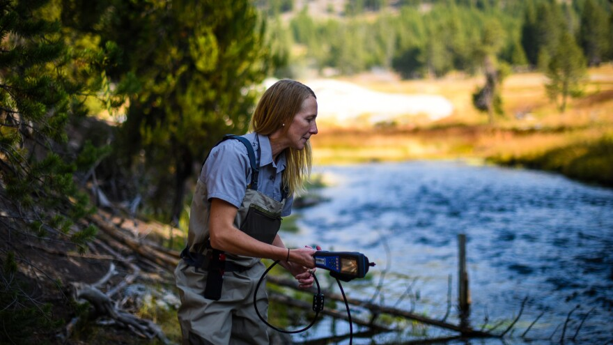 National Park Service hydrologist Erin White prepares to test the waters of the Firehole River near Yellowstone's famous Old Faithful geyser.