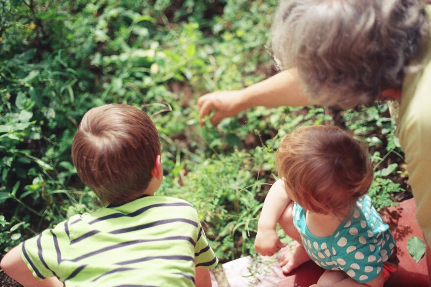 Grandmother points to something in the grass. Grandchildren look where she's pointing.