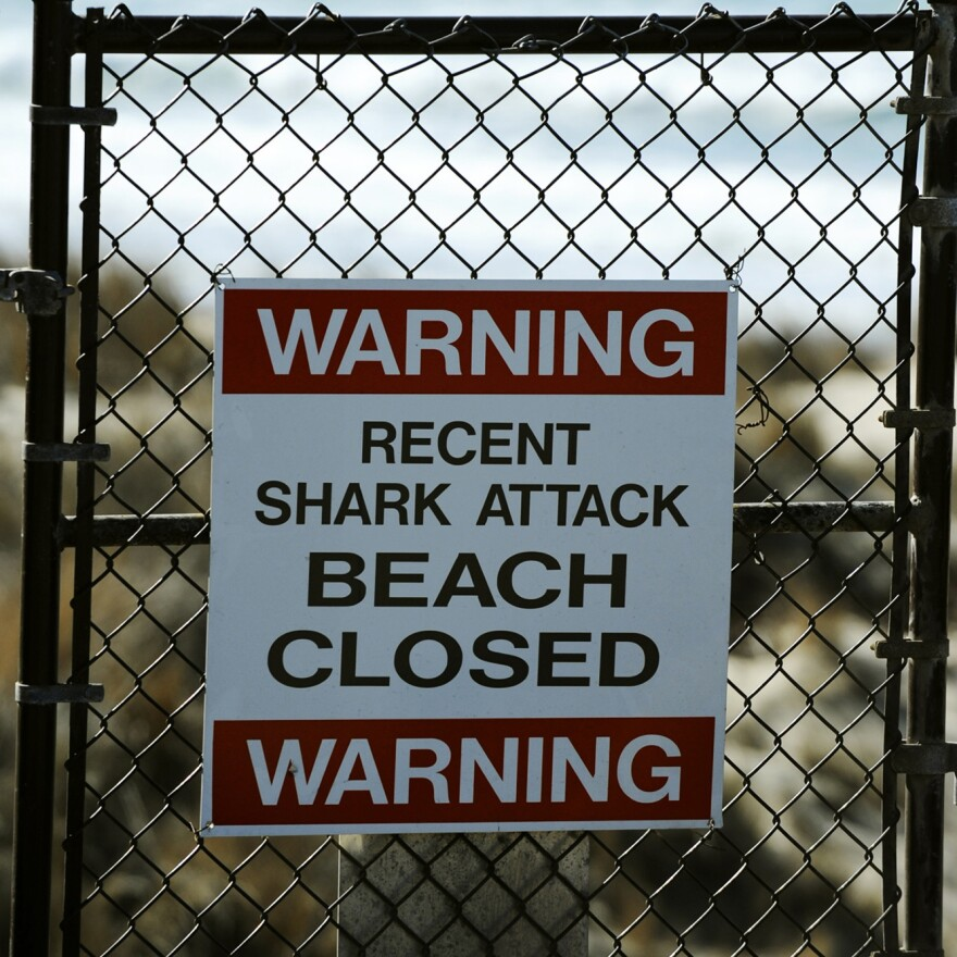 The beach is closed near  Vandenberg Air Force Base after Tuesday's shark attack.