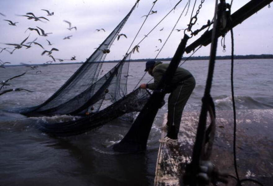 """A fisherman attaches a """"lazy line"""" to the tail bag."""