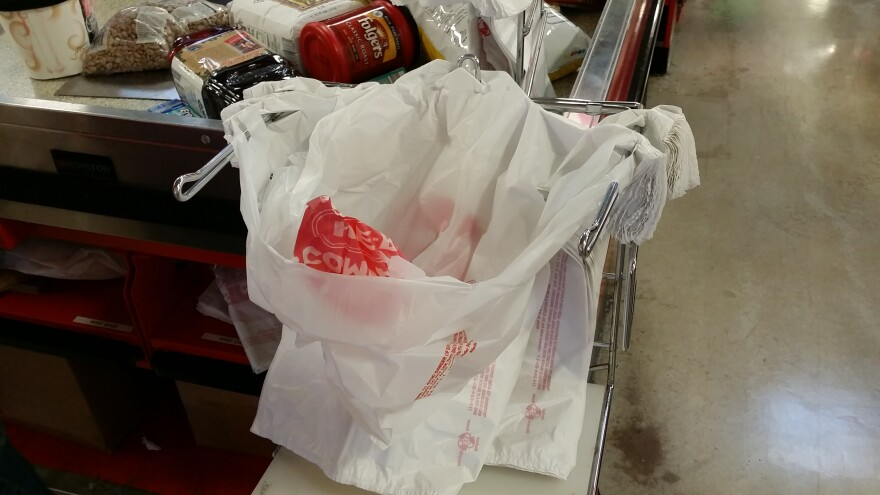 plastic-bag-140508.jpg