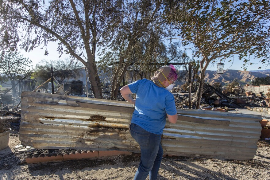 Hull carries metal to help contain her pig and bring him away from the destroyed property.