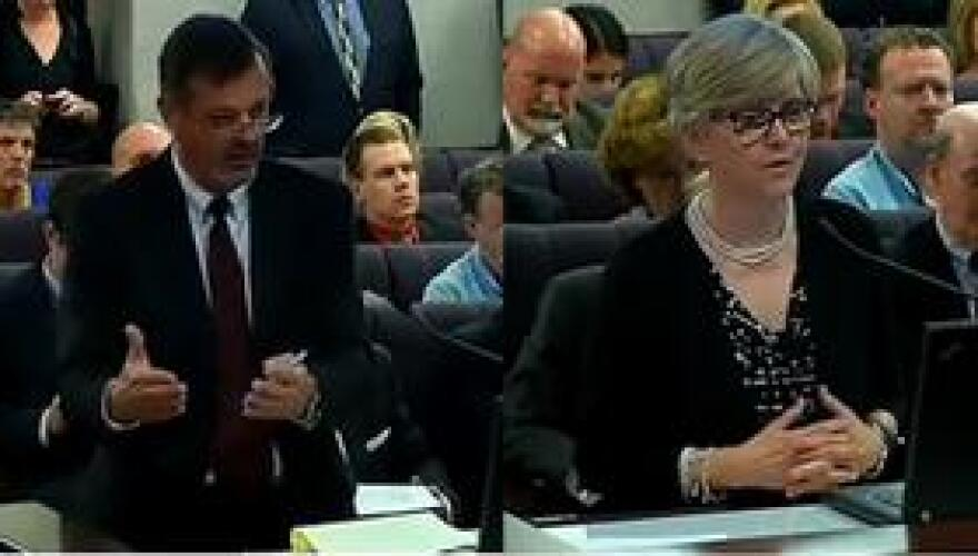 Columbia County Public Defender Blair Payne, representing the Florida Public Defenders Association, (left) and Jennifer Dritt, Executive Director of the Florida Council Against Sexual Violence, speaking separately to a Senate panel Monday.