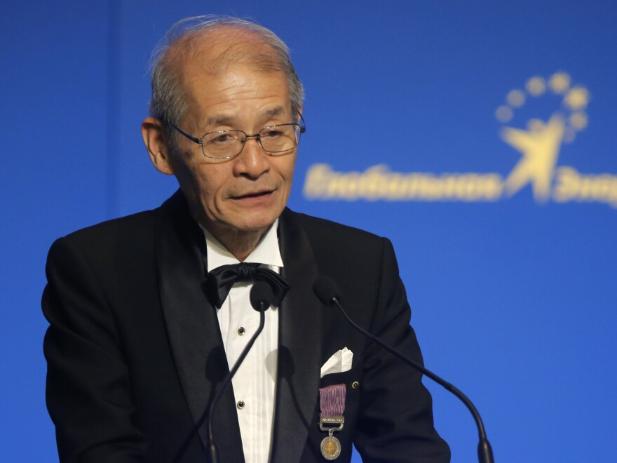 Japanese chemist Akira Yoshino speaks during a Global Energy Prize award ceremony in St. Petersburg, Russia, in 2013.
