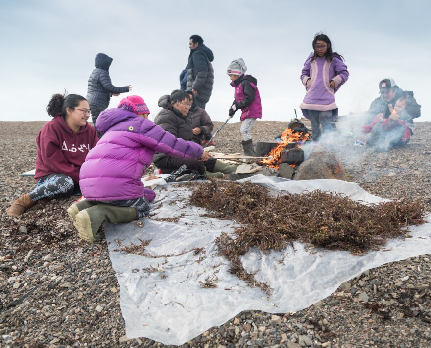 While her grandchildren roast marshmallows, Piuyuq Enoogoo cooks a pot of seal meat over a fire made from heather gathered on the nearby tundra. The family was spending a few days of camping and hunting near Arctic Bay.