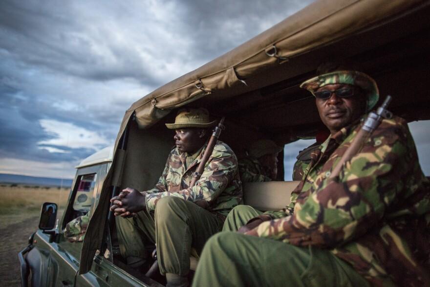 A ranger anti-poaching unit at the Mara Conservancy at Maasai Mara National Reserve Kenya.