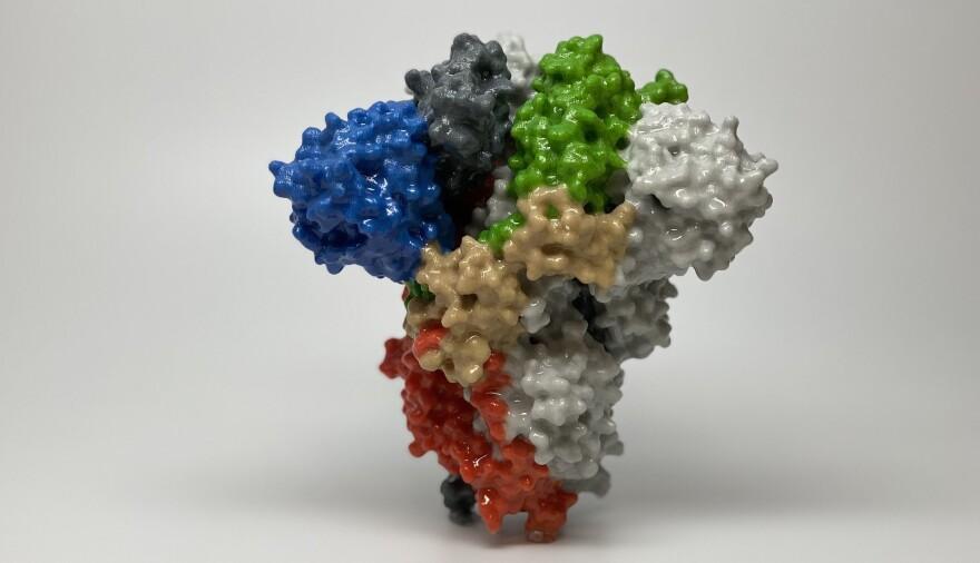 covid-19spikeprotein.jpg