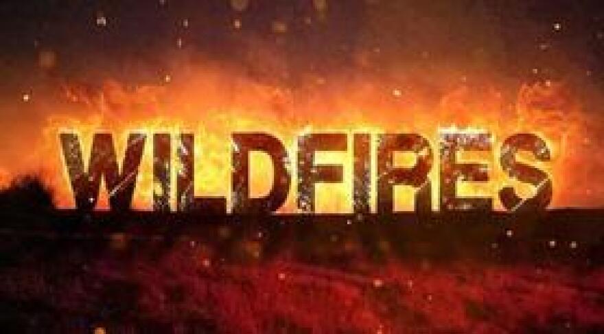 WildfiresMGN0508.jpg