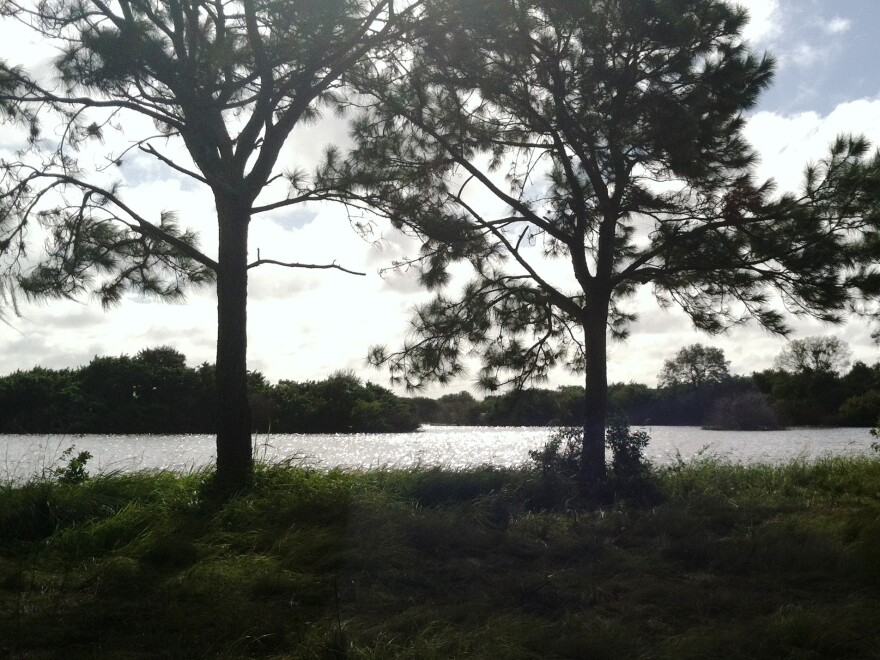 lake_landscape1.jpg