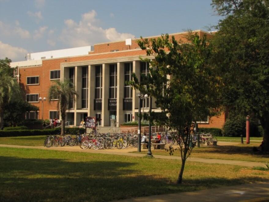 Florida-State-University-8D3CE332.jpg