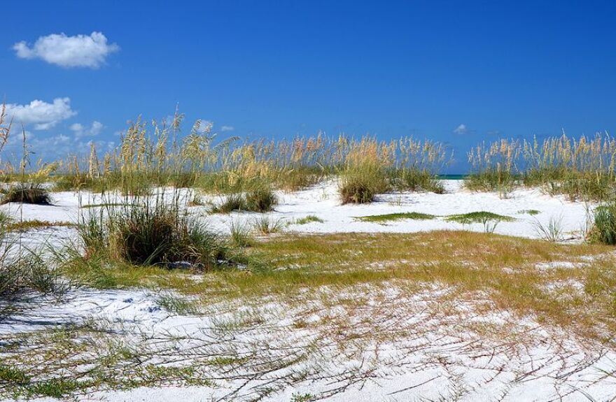 Manatee County beaches will reopen starting Monday under social distancing guidelines, and with restrictions on parking.