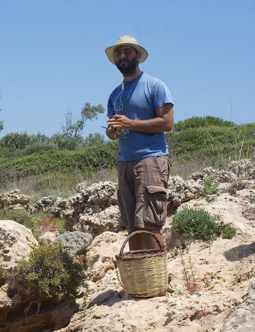 Food entrepreneur Sotiris Lymperopoulos spends many mornings foraging for wild greens such as kritamos, sea asparagus and wild garlic, which he sells to fine restaurants and gourmet shops in Athens.