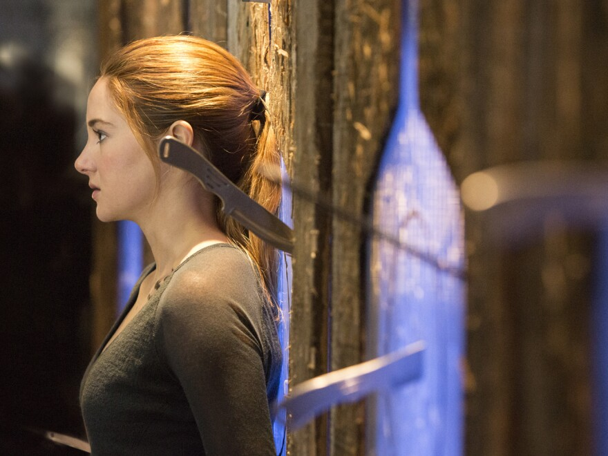 Shailene Woodley plays Beatrice Prior in the upcoming movie <em>Divergent</em> (March 2014), based on the dystopian young adult novel by Veronica Roth. The hugely popular book contains themes of economic struggle and class warfare.