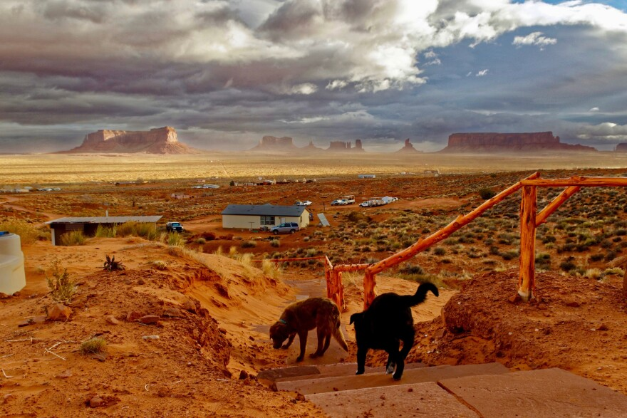 Photo of dogs outside in Monument Valley