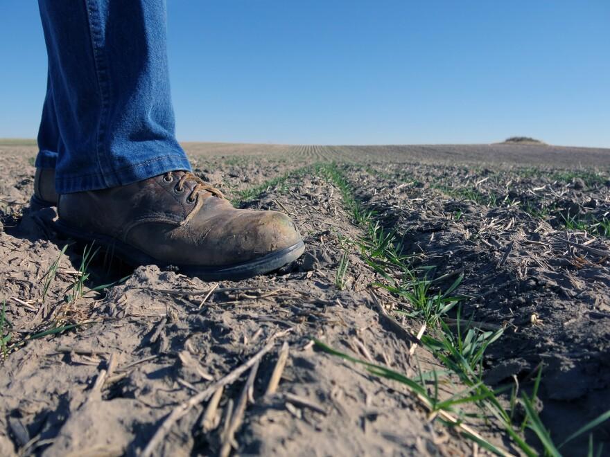 051017_Climate_foot.JPG